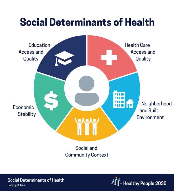 Social determinants of health domains