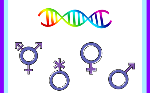 Separating sex and gender: What's biology, and what's socially constructed?