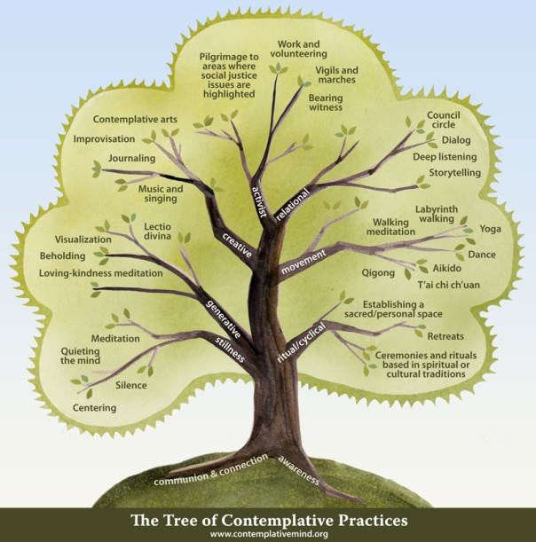 The tree of contemplative practices from The Contemplative Mind Foundation
