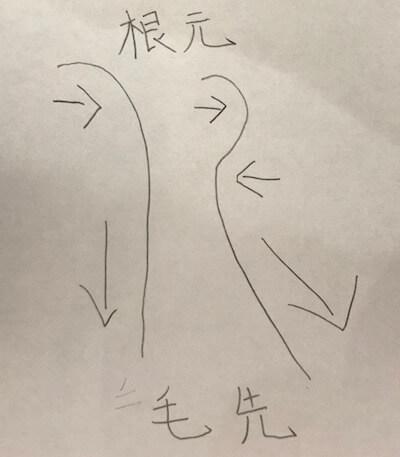 【図解】髪がハネる原理