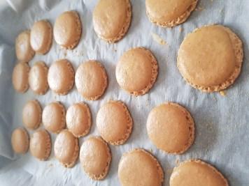 macaron sfornati