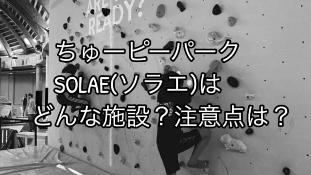 【ちゅーピーアスレチック】ソラエはどんな施設?注意点は?