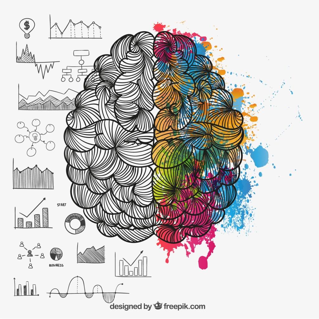 curiosidades cerebro