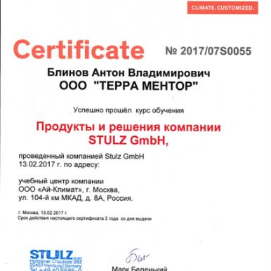 Сертификаты Терра Ментор
