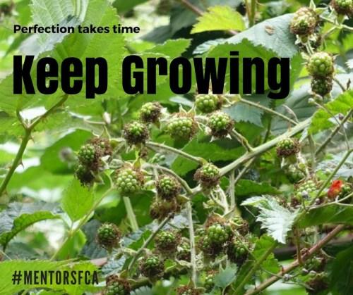 Keep Growing  Dec 13, 2017