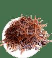 Tabebuia impetiginosa (Лапачо)
