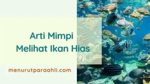 Tafsir Mimpi Melihat Ikan Hias