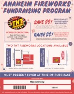 FIireworks Flyer 2016