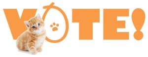 kitten-vote