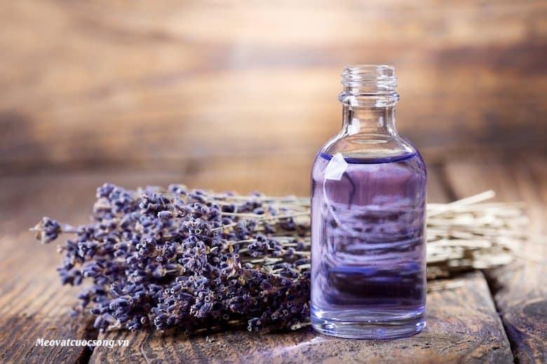 Tinh dầu hoa oải hương trị hôi chân hiệu quả