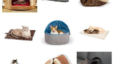 self warming cat beds feature