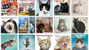 2018 cat wall calendars feature