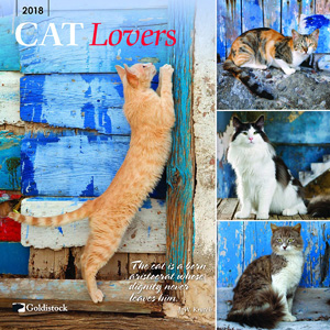2018 cat wall calendars