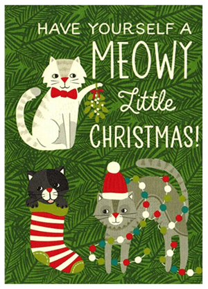 Sets of christmas cards for cat lovers meow as fluff sets cat christmas cards m4hsunfo