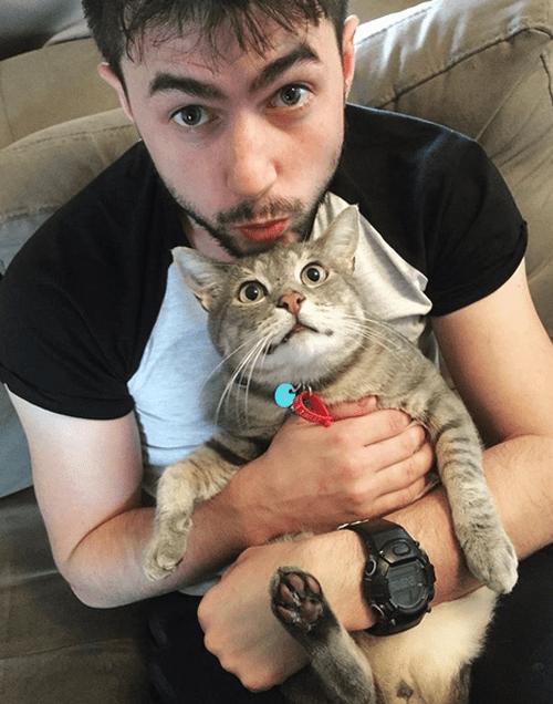 tripod cat three legged