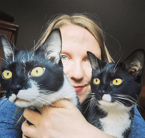 ch cerebellar hypoplasia tuxedo cats