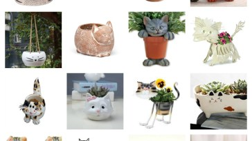 best cat plant pot planters feature