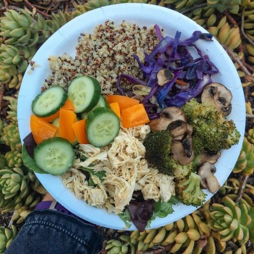 buffet-plate-shredded-chicken