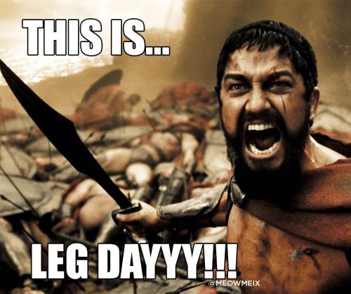 leg-day-meme