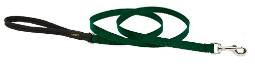 Premium Leash with Padded Handle - Green