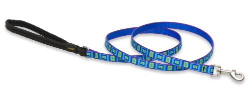 Premium Leash with Padded Handle - Sea Glass