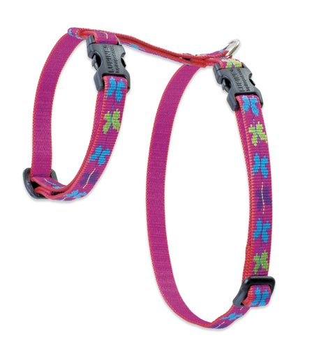 "Premium H-Style Harness - Wing It, 12-20"" Girth"