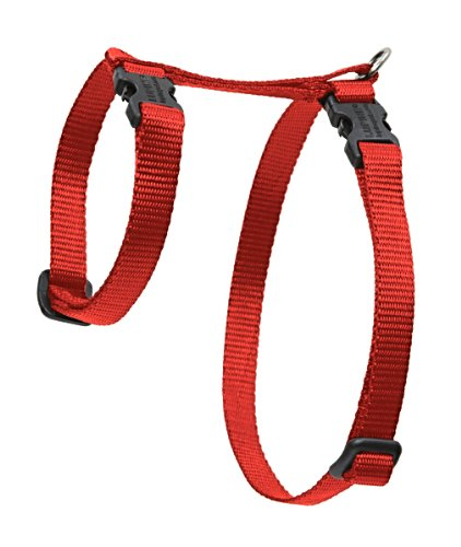 "Premium H-Style Harness - Red, 12-20"" Girth"