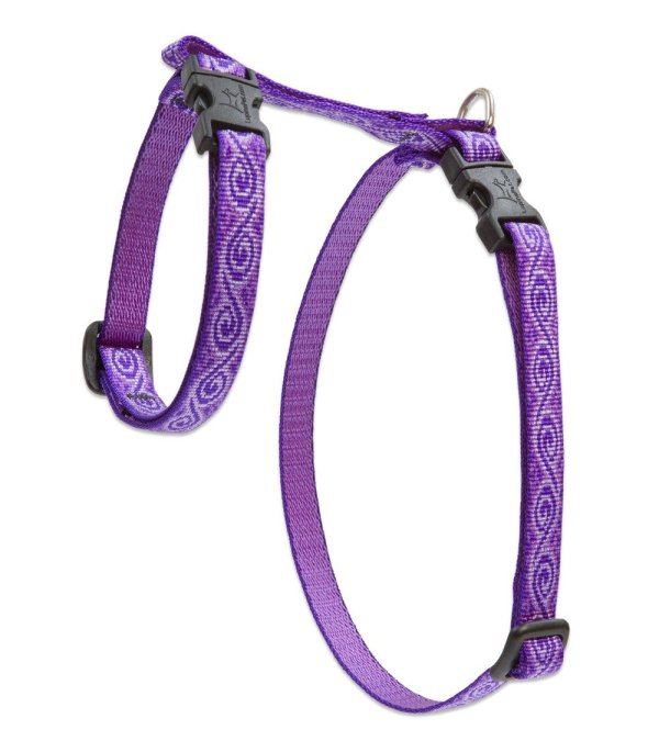 "Premium H-Style Harness - Jelly Roll, 12-20"" Girth"