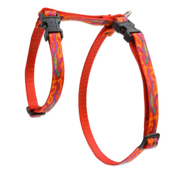"Premium H-Style Harness - Go Go Gecko, 12-20"" Girth"