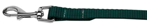 "Plain Nylon Leash 3/8"" by 6ft Green"