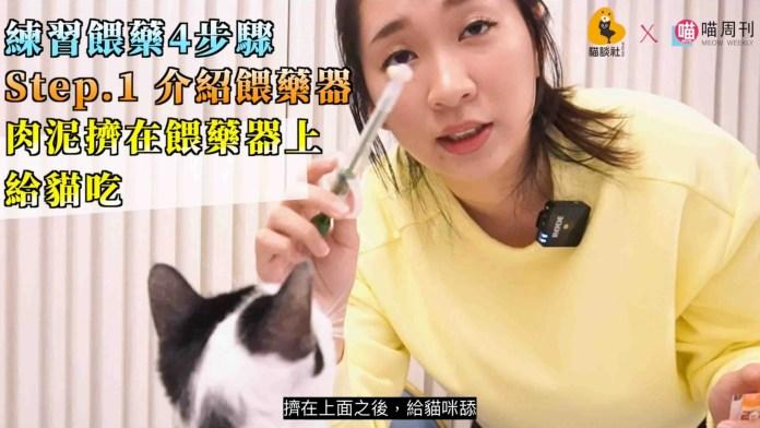 2021 03 18 下午12.59.48 5 edited scaled | 喵周刊 Meow Weekly