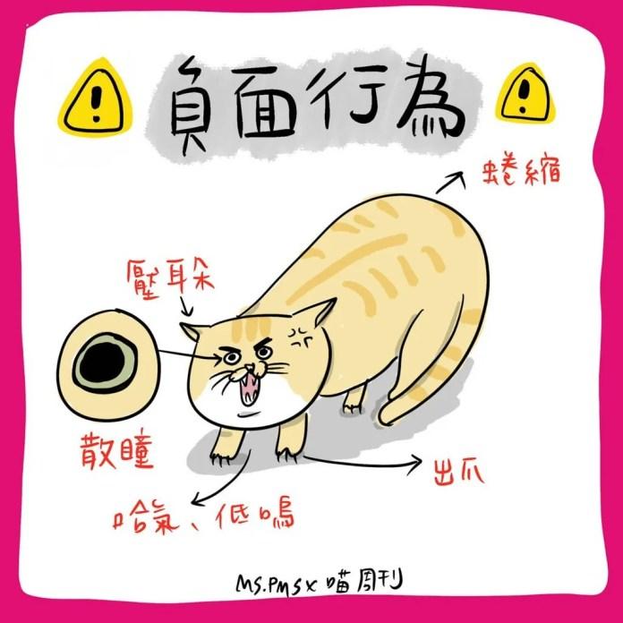 12 21 | 喵周刊 Meow Weekly