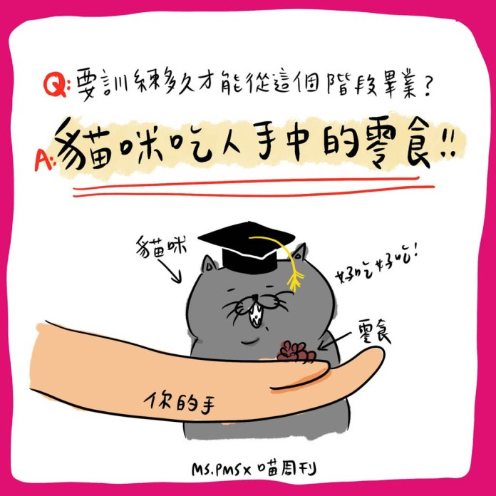 14 21 | 喵周刊 Meow Weekly