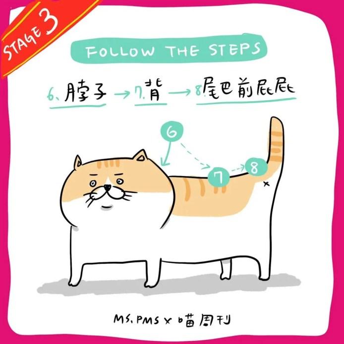 17 21 | 喵周刊 Meow Weekly