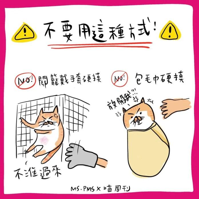 3 21 | 喵周刊 Meow Weekly
