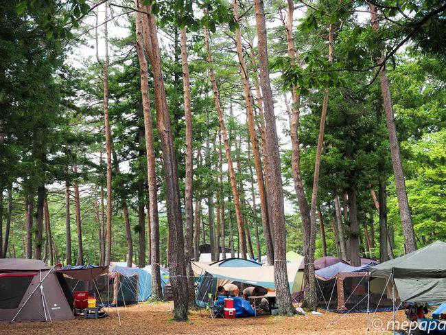 白馬グリーンアルプスの森キャンプ場