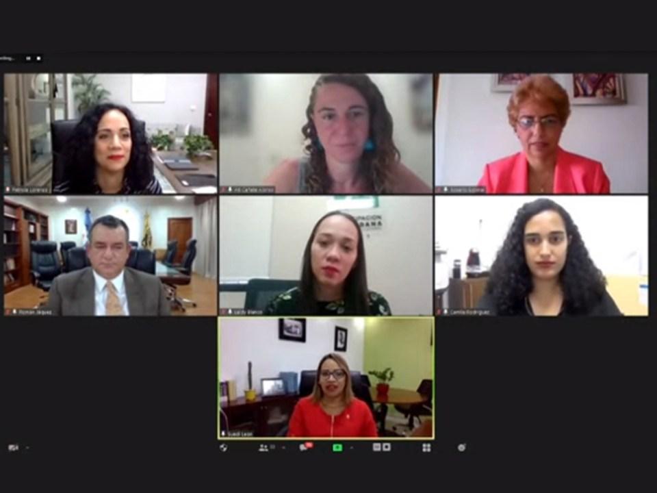 """La directora de Pobreza, Desigualdad y Cultura Democrática del Ministerio de Economía, Planificación y Desarrollo, Rosa Cañete, participa en el panel virtual """"Cultura política y liderazgo de Mujeres"""", organizado por la JCE."""