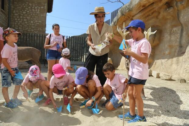 Los arqueólogos profundizarán este verano en la trama