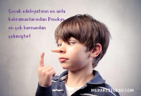 pinokyo, burun, çocuk edebiyatı, psikoloji, neden yalan söyleriz, betimleme nedir, betimleyici anlatım, edebiyat, türkçe,