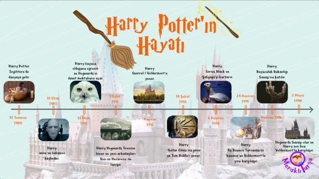 harry potter, zaman çizelgesi, kronolojik zaman çizelgesi, Harry Potter'ın hayatı, zaman çizelgesi çalışma kağıdı örnekleri, meraklı turşu, irem sunar özat, edebiyat, çocuk edebiyatı, en sevilen