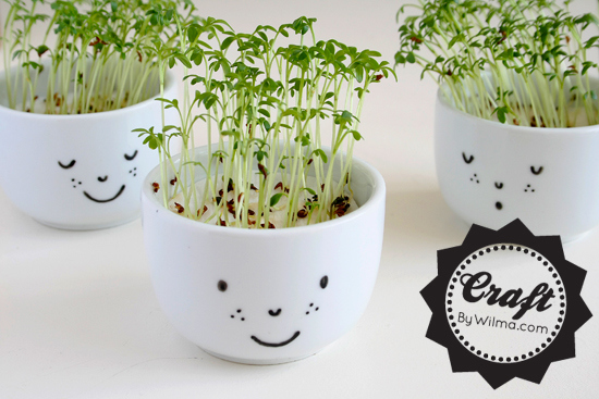 cute-cress-cups-with-a-face-diy-2
