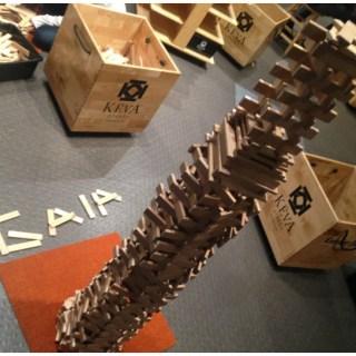 Canadian finds: KEVA costruzioni in legno d'acero