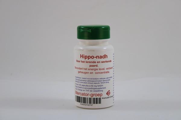 Hippo NADH