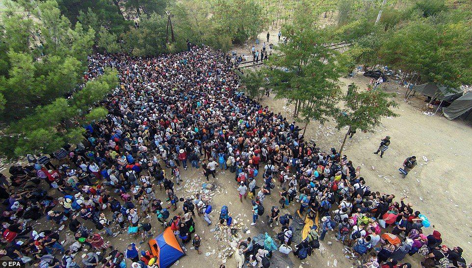 Vague migratoire ou complotisme?