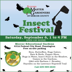InsectFest