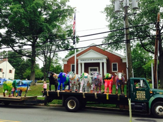 Ox to Decorate Hopewell Valley as Stampede Kicks Off Friday