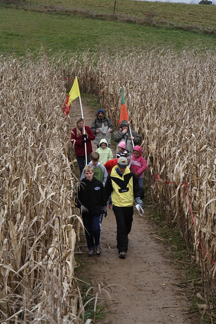 Howell Farm's 20th Anniversary Corn Maze is Open for the Season