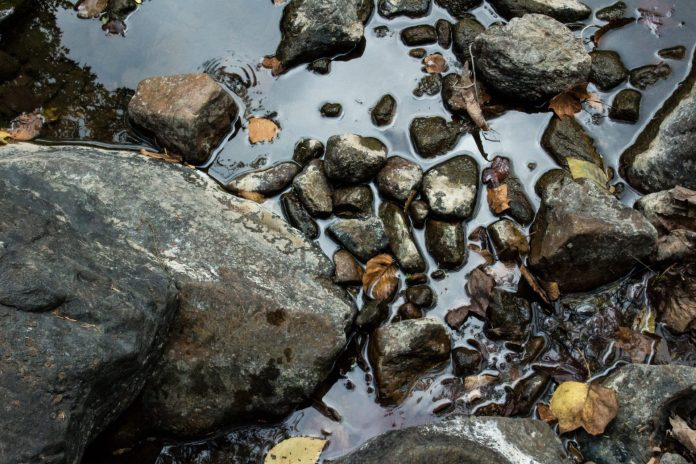 Fine Art Photography of the Raritan River by PDS Students at D&R Greenway