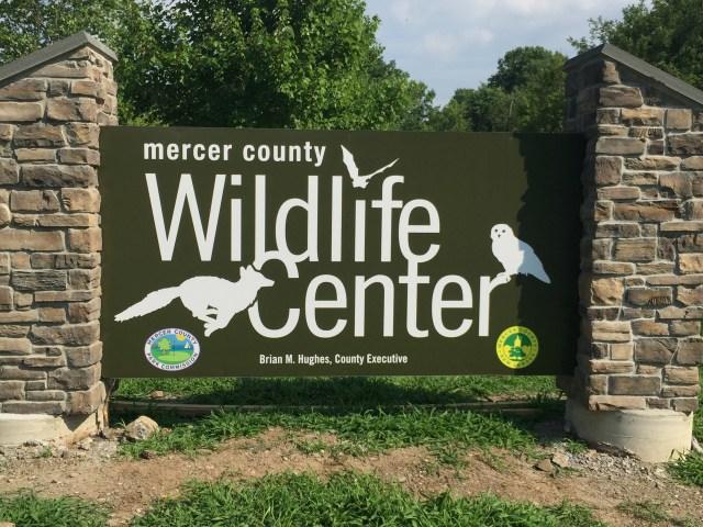Mercer County Wildlife Center