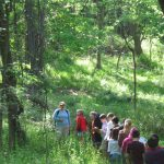 Children on D&R Greenway Preserve Guided Walk